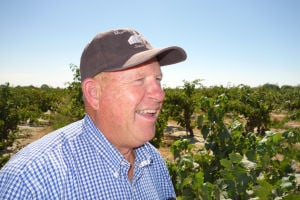 Lodi grower blends tradition, innovation