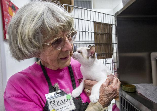Early summer is a busy time for Lodi's animal shelters