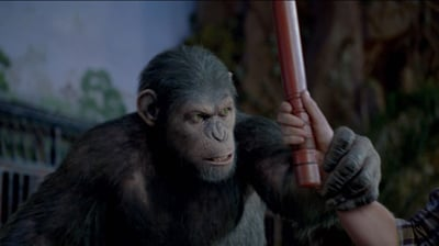 Apes a worthwhile franchise resurrection