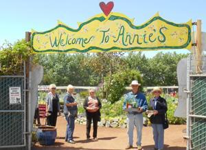 Lodi Garden Club members visit nurseries in Bay Area