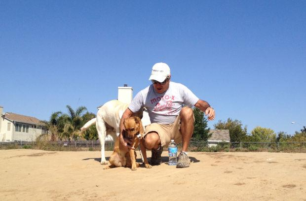 Some Lodi dog owners avoiding parks