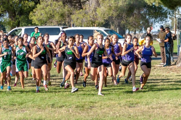 Cross country: Tigers wrap up titles