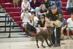 Police dogs charm Lodi High School seniors