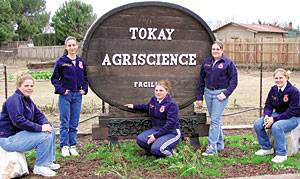 FFA prepares local students for future in agricultural careers