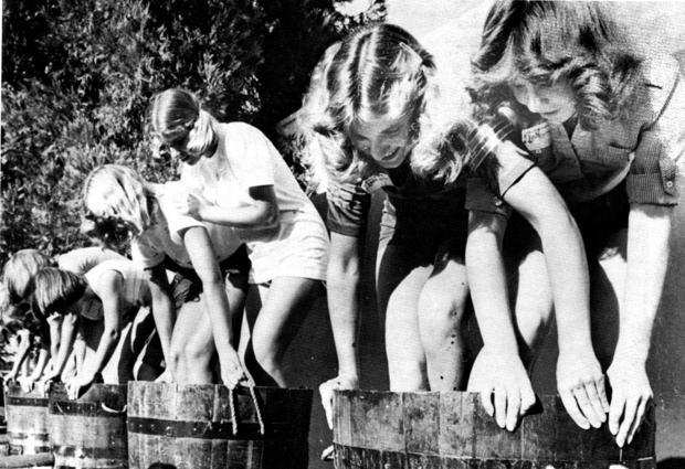 Lodi Grape Festival history