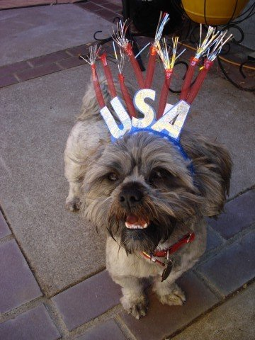 Happy 4th from Gadget