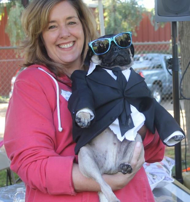 Trick or dog treats: Local pugs dress up in costume