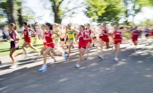 Fast start for Lodi Flames in cross country