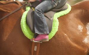 Galt Horse Assisted Learning Enrichment Program offers students a chance to ride, learn