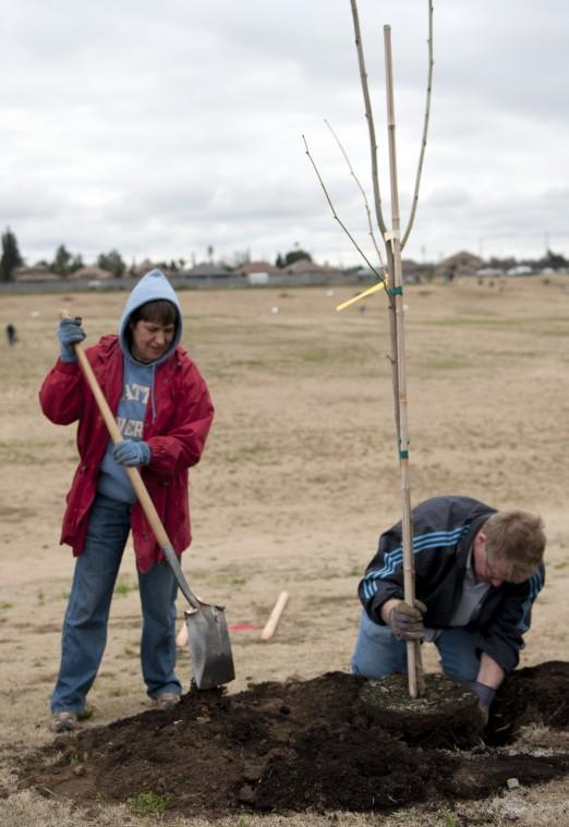 DeBenedetti Park tree planting