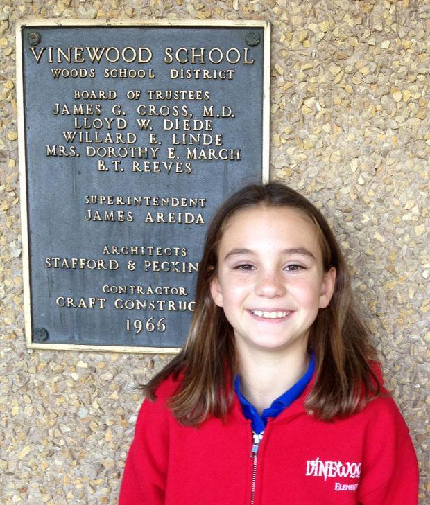 Vinewood Elementary School Classroom Hero