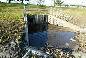 Lodi's park basins keep city mostly dry in heavy downpours 