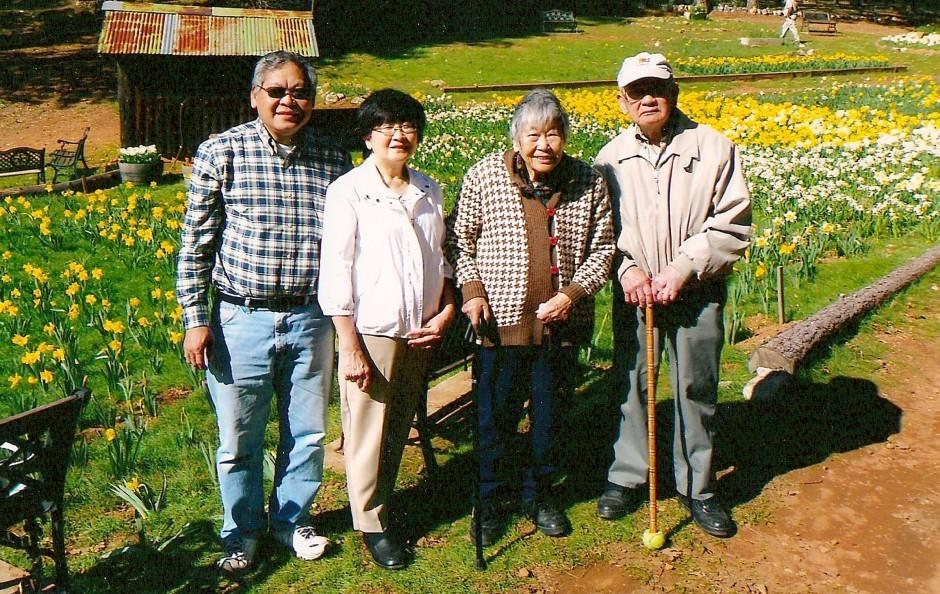 Lap and Yee Wong recall beauty of daffodils