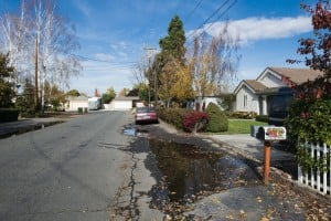 Residents Of Two Streets In Lodi Say No To Adding Sidewalks, Storm Drains: Standing water from recent rain puddles on the edge of Willow Street on Tuesday, Nov. 20, 2012. The Lodi City Council decided not to add gutters, curbs and sidewalks to Willow and Peach streets during a meeting later that day.  - Dan Evans/News-Sentinel