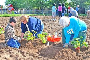 Congregation, others plant seeds of community garden