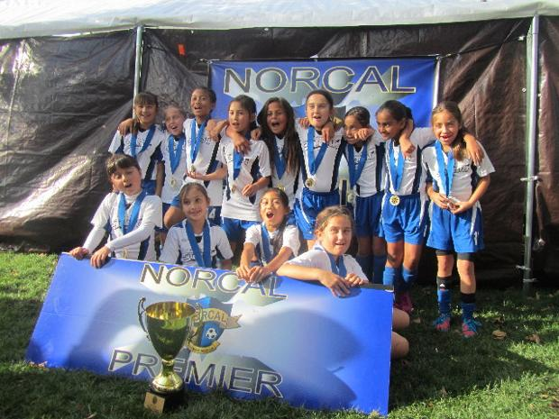 Storm FC 04G Elite U9 Girls Soccer Team