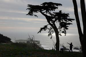 Take in views of Bay while hiking trails at Lands End