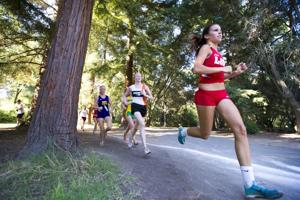 Lodi Flames girls, boys finish 1-2 at cross country invitational