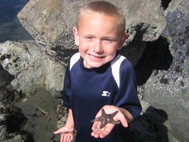 Star fish adventure in Crescent City Ca