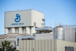 Bob Johnson to represent Lodi council in General Mills talks