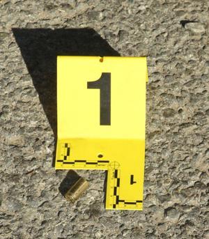 San Joaquin County Sheriff's deputy kills aggressive dog