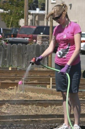 Galt United Methodist Church to host open house for community garden