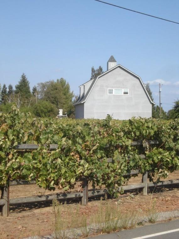 Where it all started – Kidder Family Vineyard