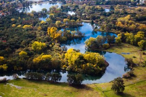 Lodi shows its fall colors