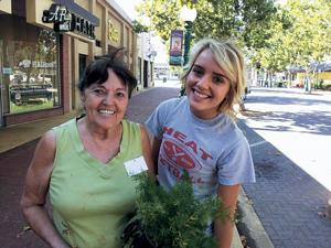 Volunteers care for potted plants in Downtown Lodi