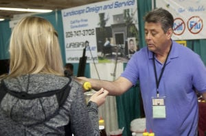 Inspiration and ideas for Lodi homeowners at annual Home and Garden Show