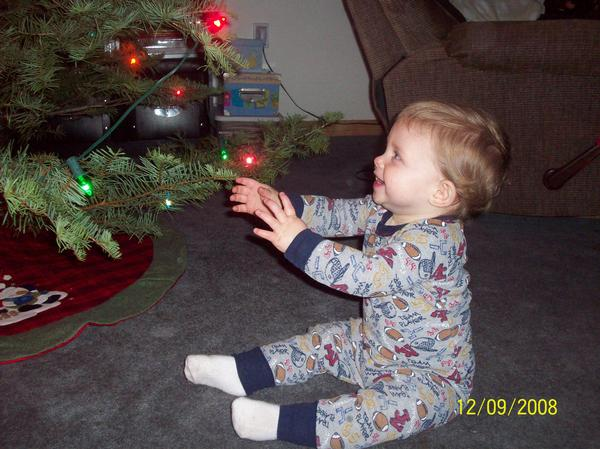 1st Christmas Tree