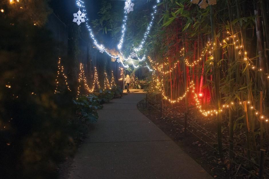 Zoo Lights at Micke Grove Zoo
