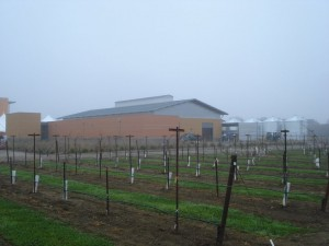 The Robert Mondavi Institutes new winery