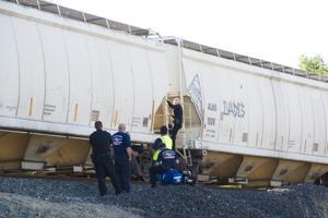 Train kills pedestrian in Lodi