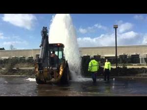 Car hits fire hydrant