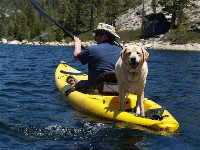 Paddling with Sadie