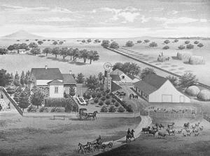 Pioneer Jacob Brack blazed the railroad line in early Lodi