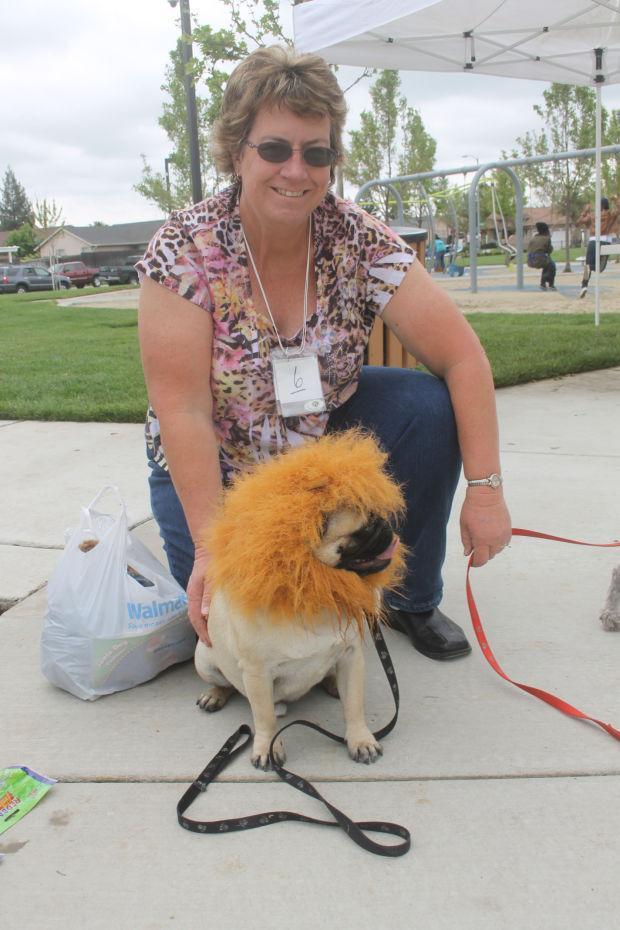 Galt Kiwanis Club holds contest at dog park