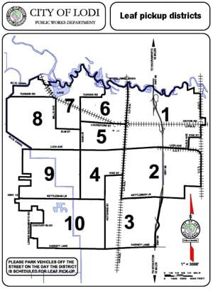 City of Lodi leaf map