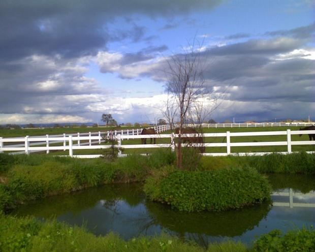 Ranch at Sunset