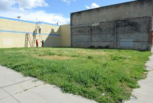 Lodi nonprofit plans pollinator garden for empty lot