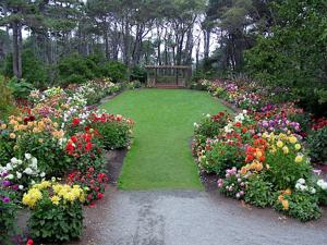 Sip wine while strolling through flowers at the Arts in the Garden in Mendocino