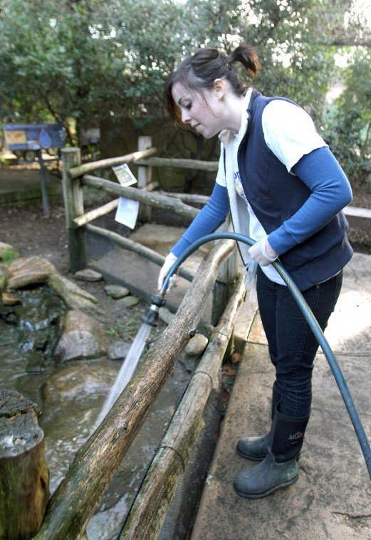 News-Sentinel reporters play zookeepers for a day