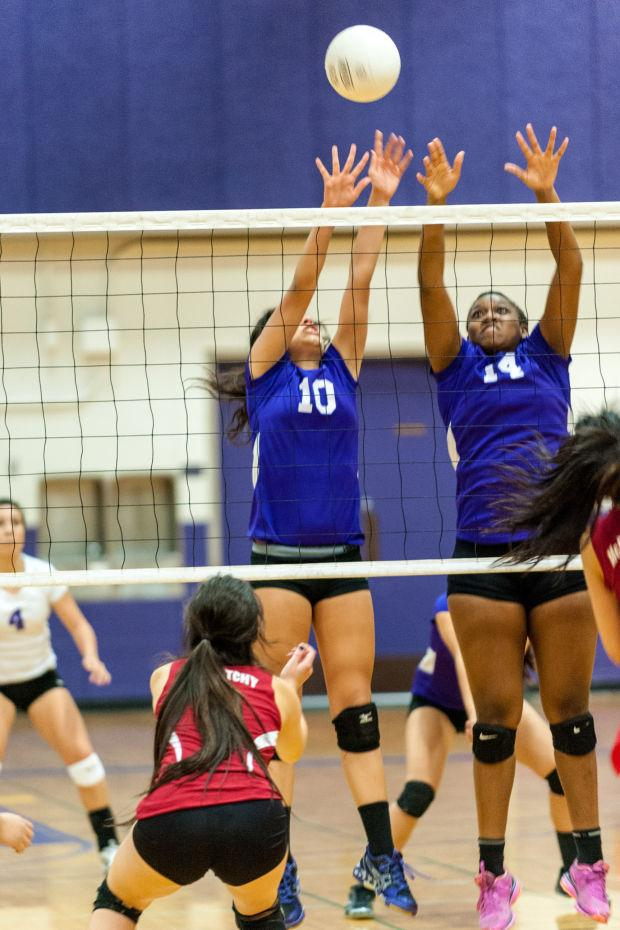 Volleyball: Tigers oust Lions, sweep into bracket