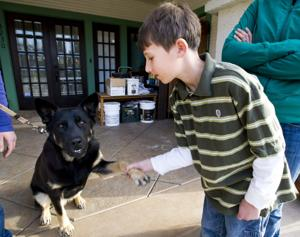 Lodi man saves Lockeford mom, son from dog attack