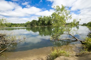 Lodi Lake Nature Area still closed; to reopen next week