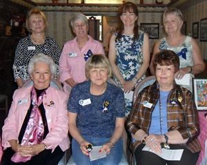 Soroptimist International of Lodi installation
