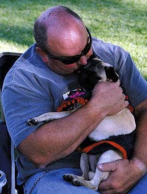 Pugs seen as unique breed; and so are the dog owners
