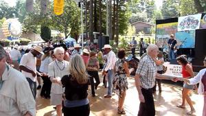 Dance among the redwoods at the Zydeco Festival in Sebastopol