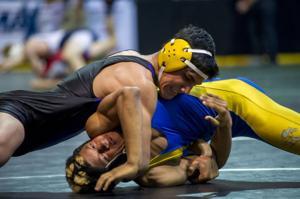 Masters Wrestling Championships: Tokay's Mendieta just misses state berth